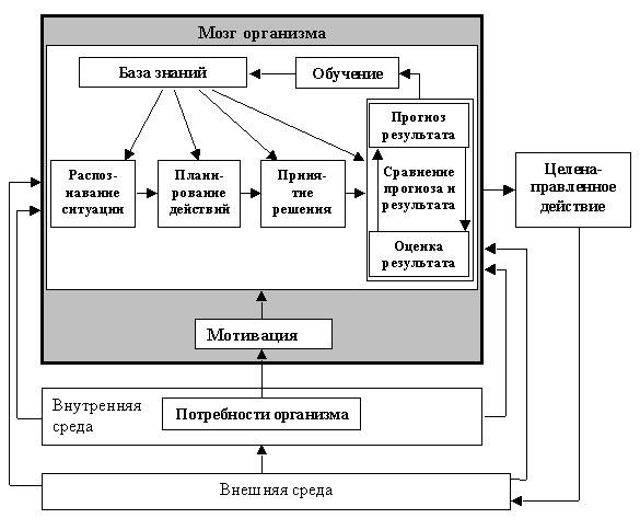 Схема построения систем организационно-экономического управления.